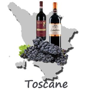 sangiovese-région-vins